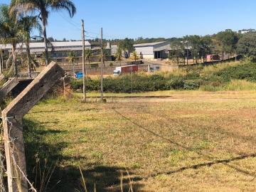 Valinhos Morro das Pedras Rural Venda R$7.200.000,00 3 Dormitorios 20 Vagas Area do terreno 1100.00m2 Area construida 1100.00m2