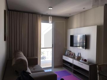 Alugar Apartamento / Padrão em Campinas. apenas R$ 426.000,00