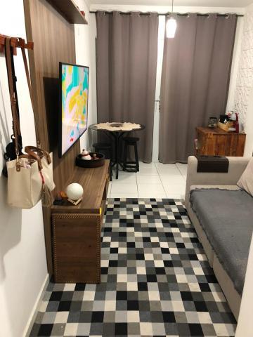 Alugar Apartamento / Padrão em Campinas. apenas R$ 1.800,00